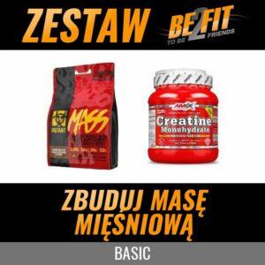 Zbuduj masę mięśniową BASIC